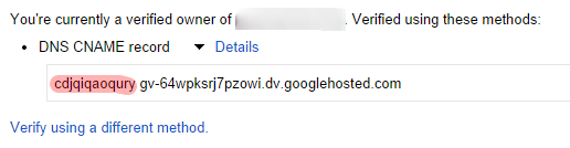 DNS verification details google webmaster tools for domain ownership