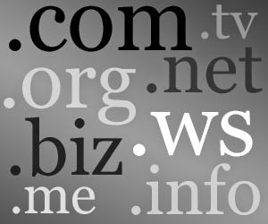 Top Level Domains - Why You Should Use a Custom Domain Name For Your Blog
