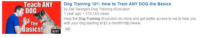 Dog Training 101: How to Train ANY DOG the Basics - YouTube SERP