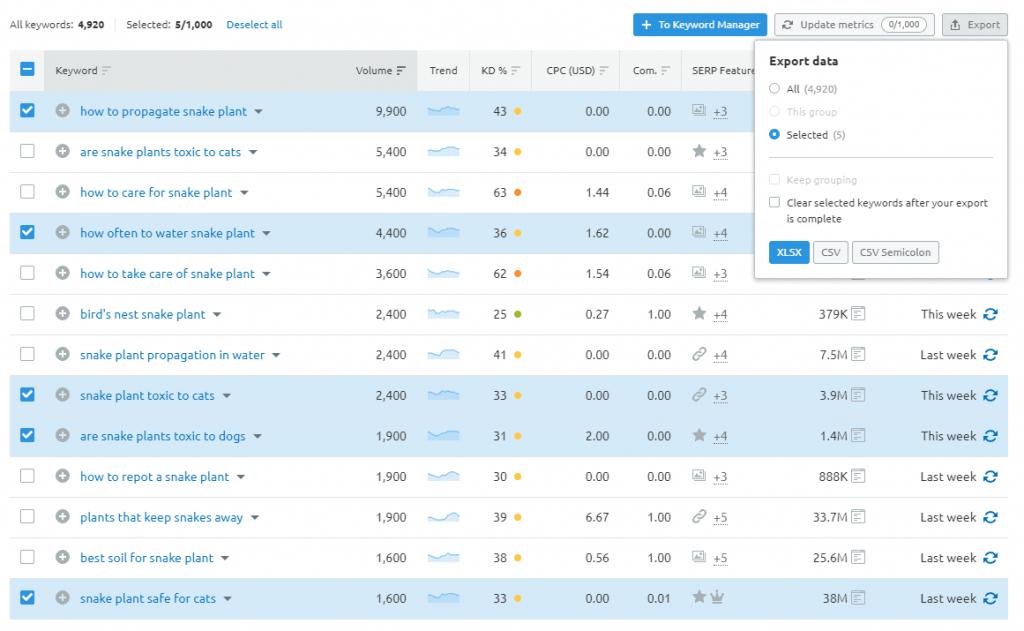 export-data-semrush-keyword-magic-tool