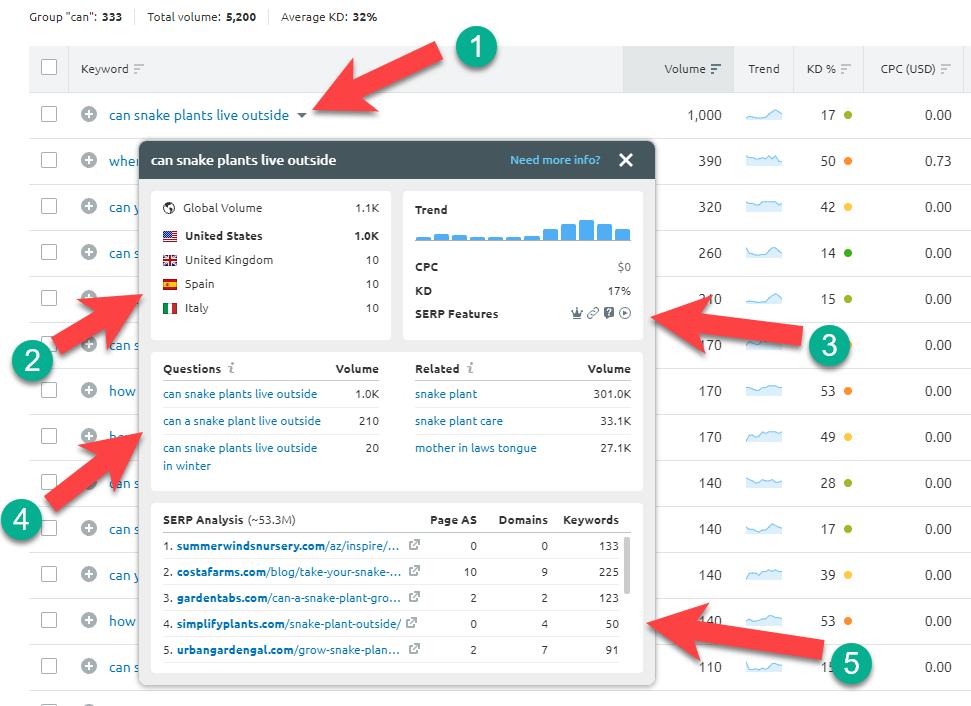keyword-information-semrush-keyword-magic-tool